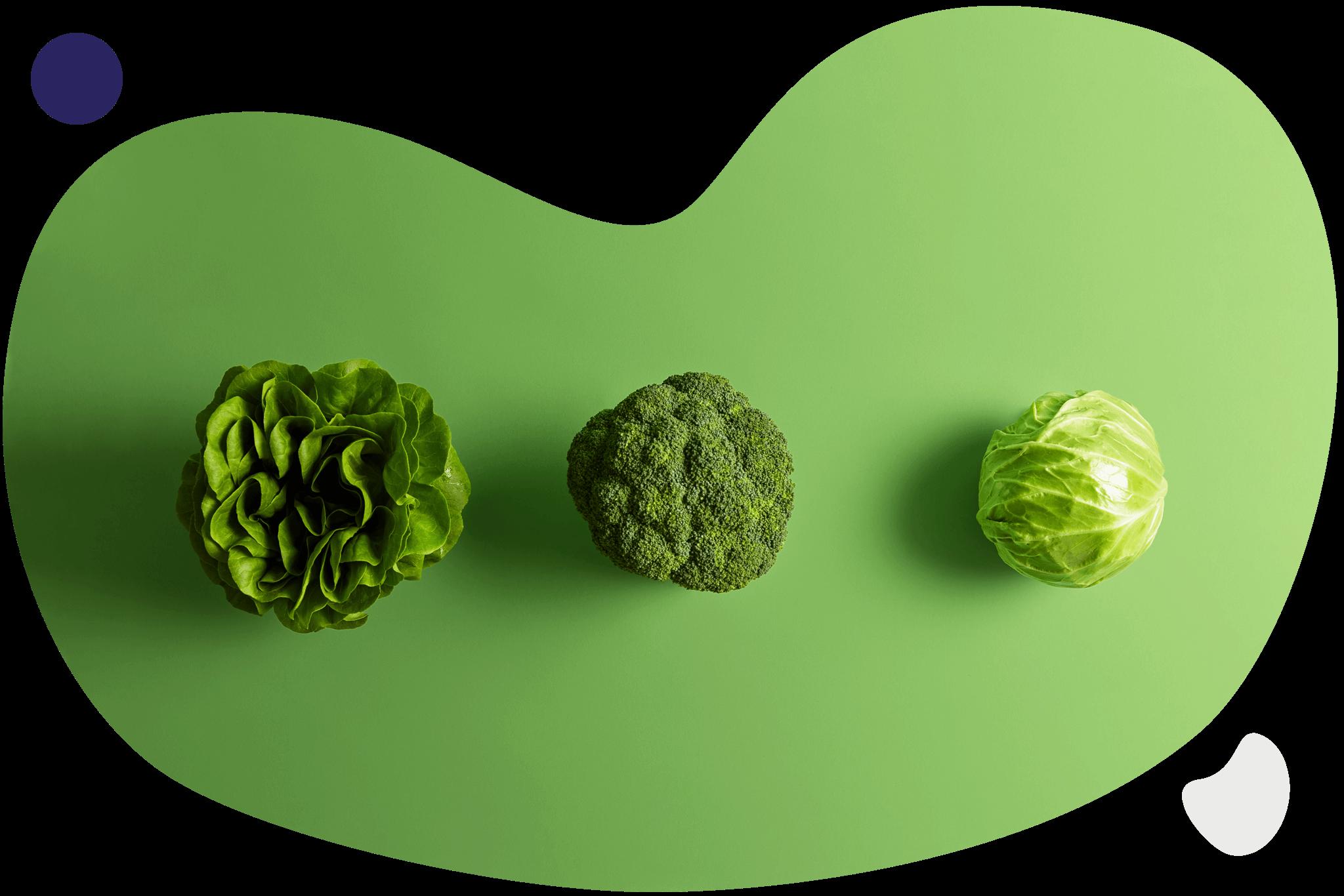 Salade, brocoli, chou