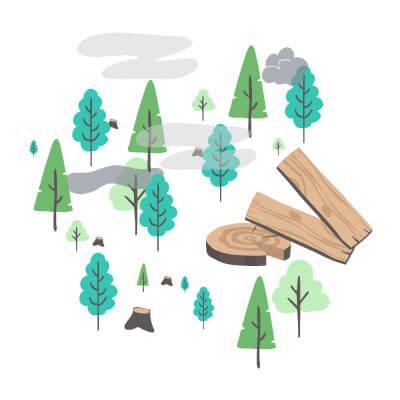 Forêt bois oeuvre
