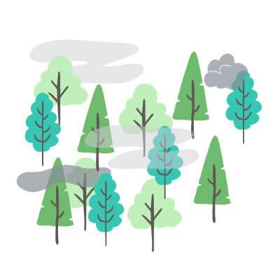 Forêt puis de carbone